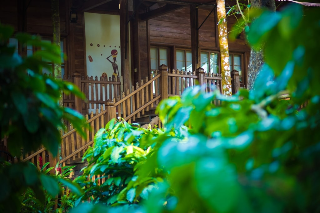 Homestays in chikmagalur